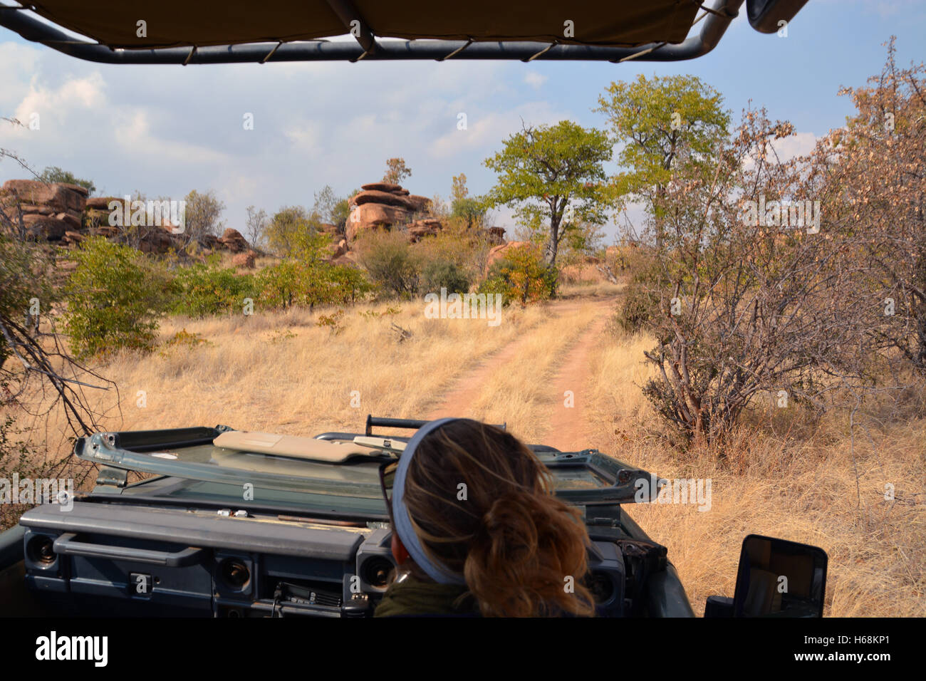 A guide maneuvers her safari jeep past kopje formations in the bush of Botswana's Tuli Wilderness region. - Stock Image