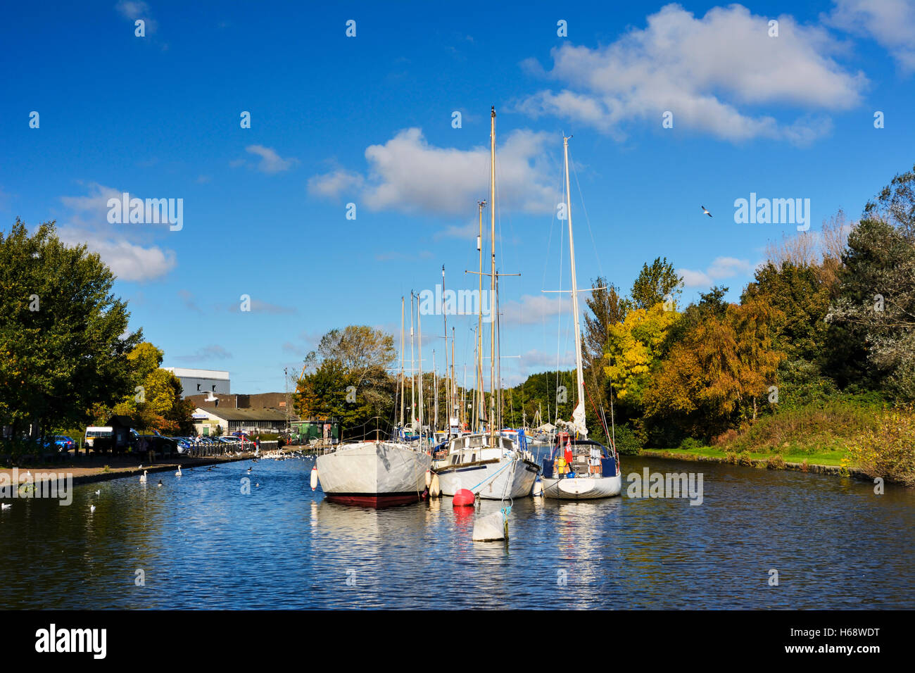 Sailing boats moored on the St Helens canal close to the River Mersey in West Bank, Widnes. - Stock Image