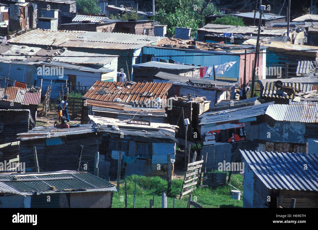 Huts with corrugated iron roofs in the Nyanga township, housing, poverty, misery, settlement, Cape Town, Western - Stock Image