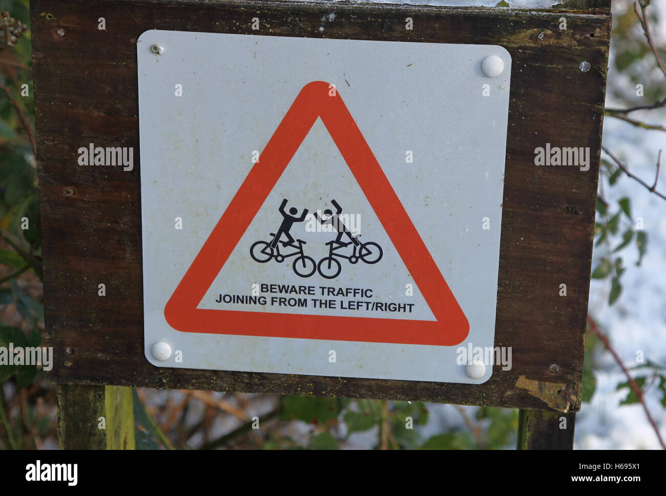 A sign warning cyclists of traffic joining the track from the left or the right - Stock Image