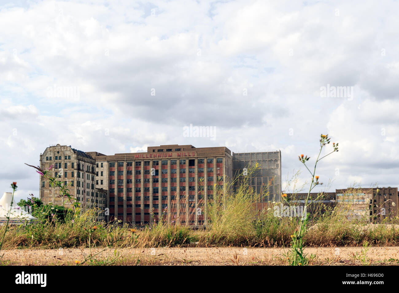 Abandoned building of Millennium Mills, former flour mills built in the early 20th century - Stock Image