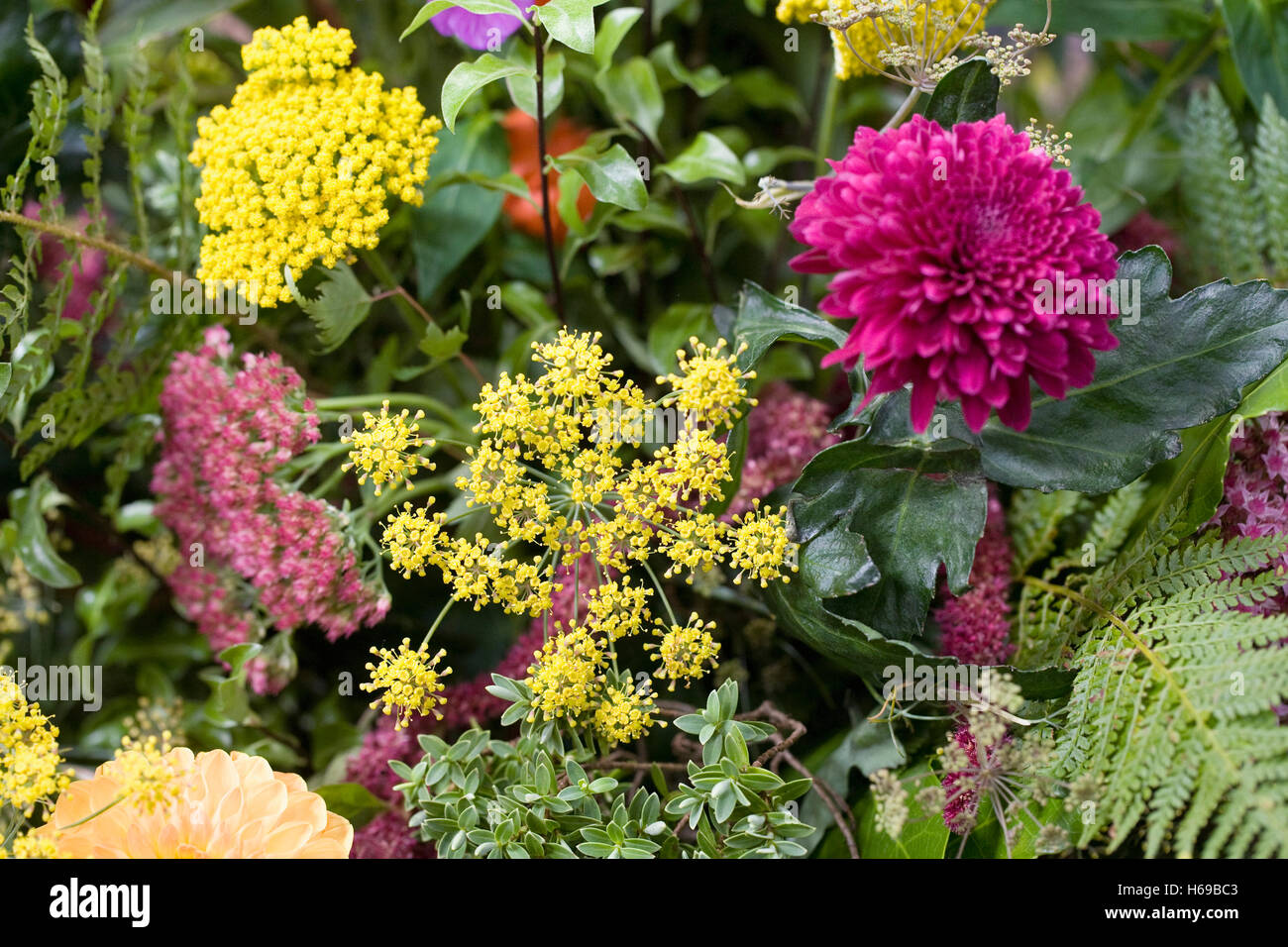 An arrangement of Autumn flowers. - Stock Image