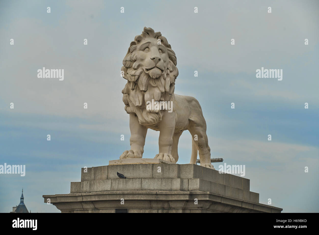 coade stone lion,  London - Stock Image