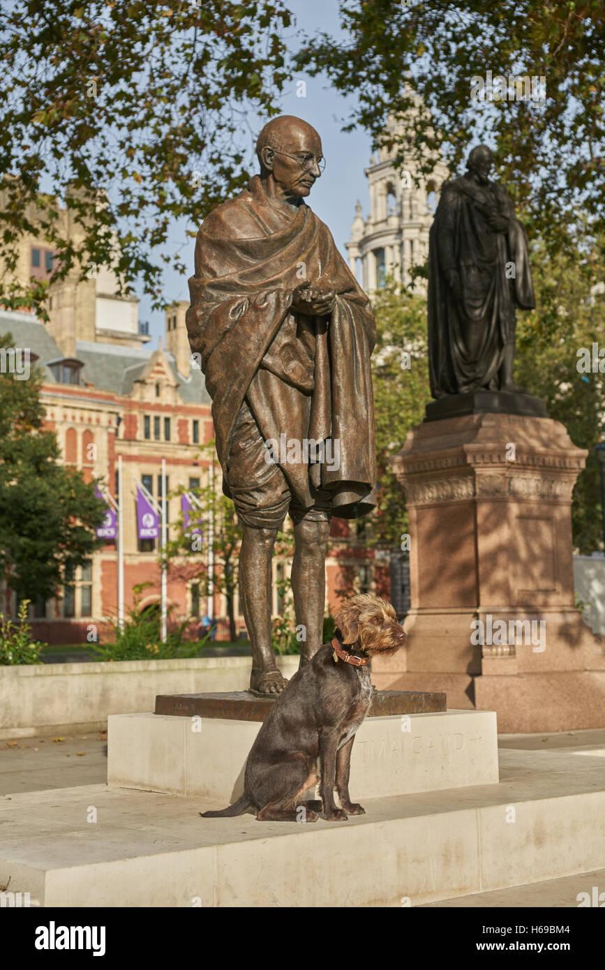 mahatma gandhi statue,  London  Parliament square - Stock Image