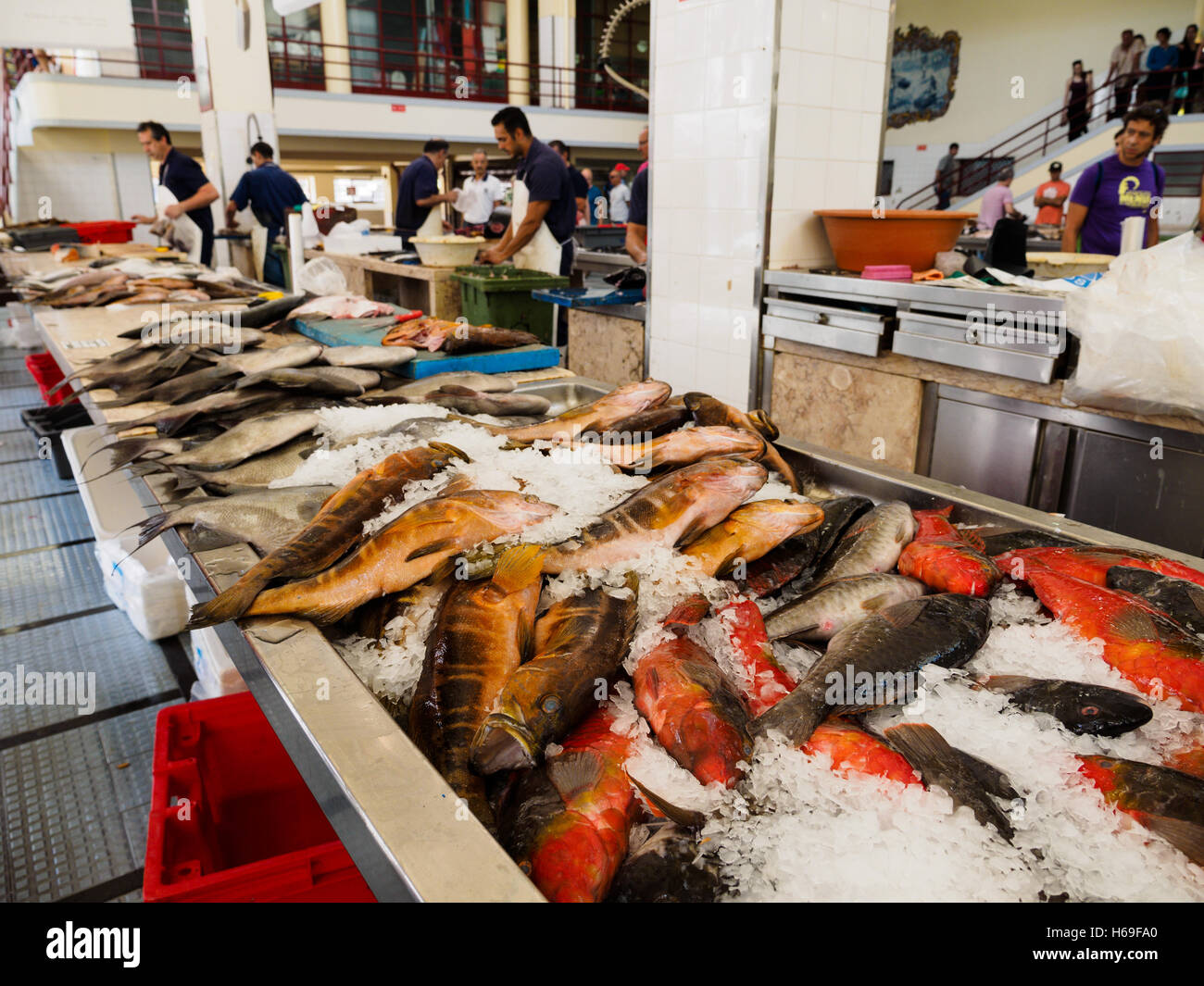 Fish is for sale in the Funchal market hall on the Portuguese island of Madeira - Stock Image