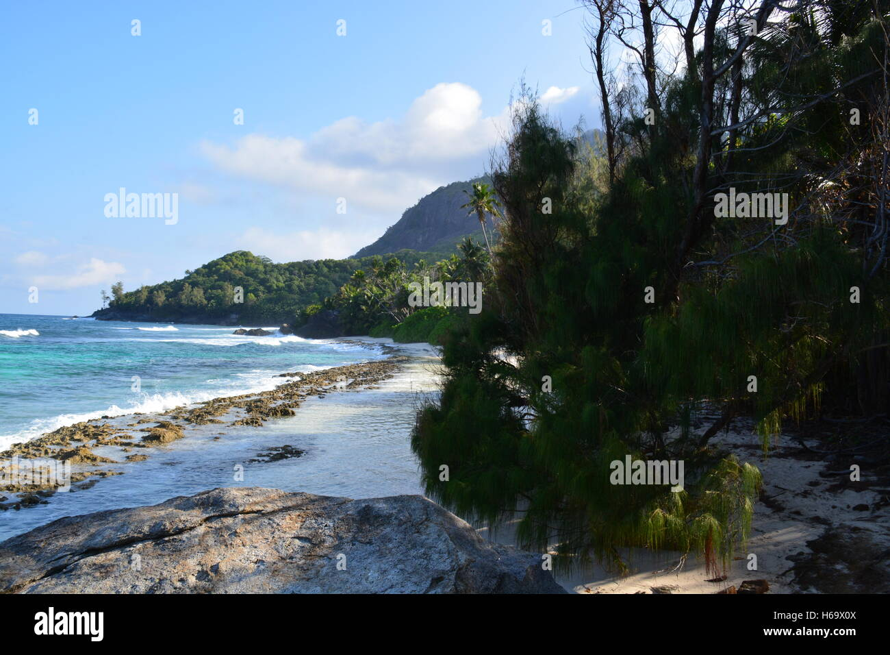 Seychelles forest blue ocean waves clear sky Stock Photo