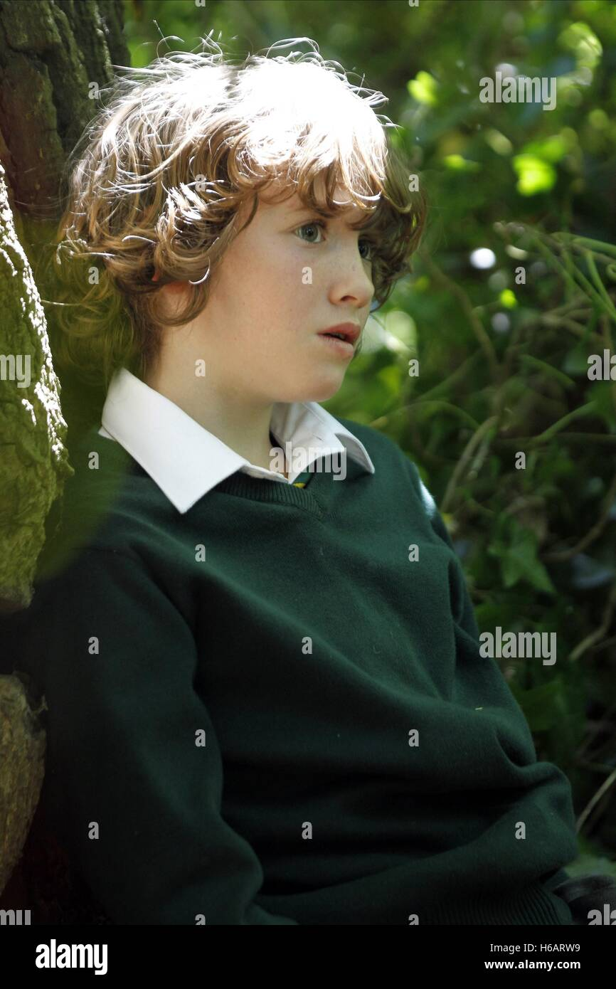 ART PARKINSON THE ANOMALY (2014) - Stock Image