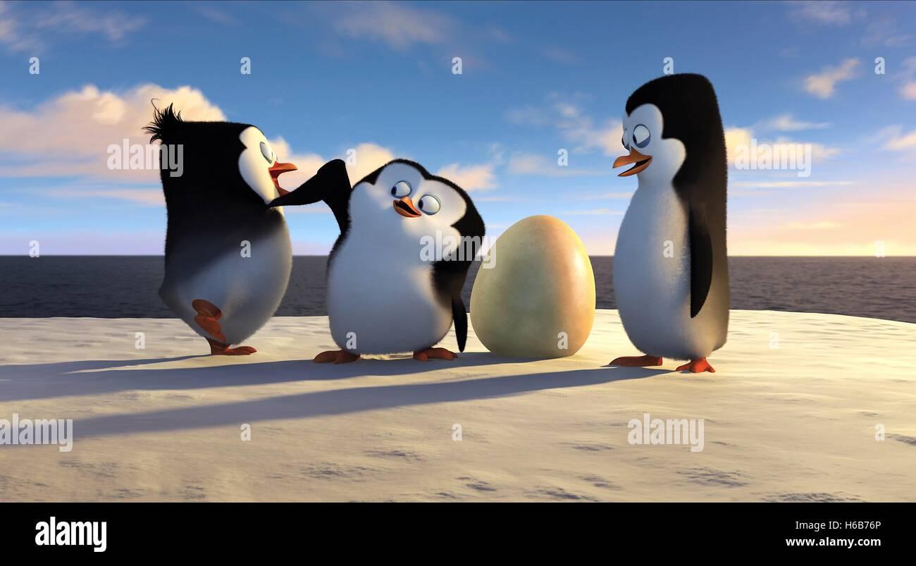 Young Penguins Penguins Of Madagascar 2014 Stock Photo Alamy