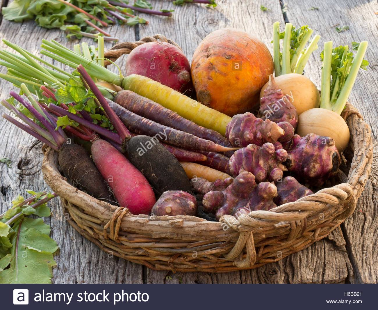 Winter root and tuber vegetables, Winter Radishes, Carrots, Beets, Jerusalem artichokes and Turnips in a wicker - Stock Image