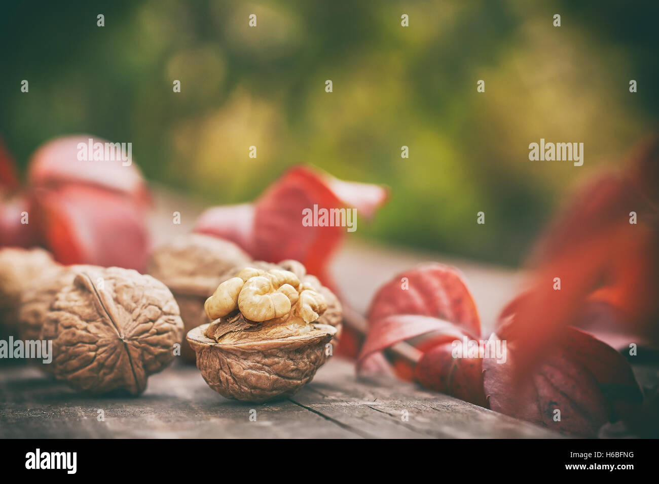 Walnuts on wooden table. Green blurry background with plenty of copy space - Stock Image