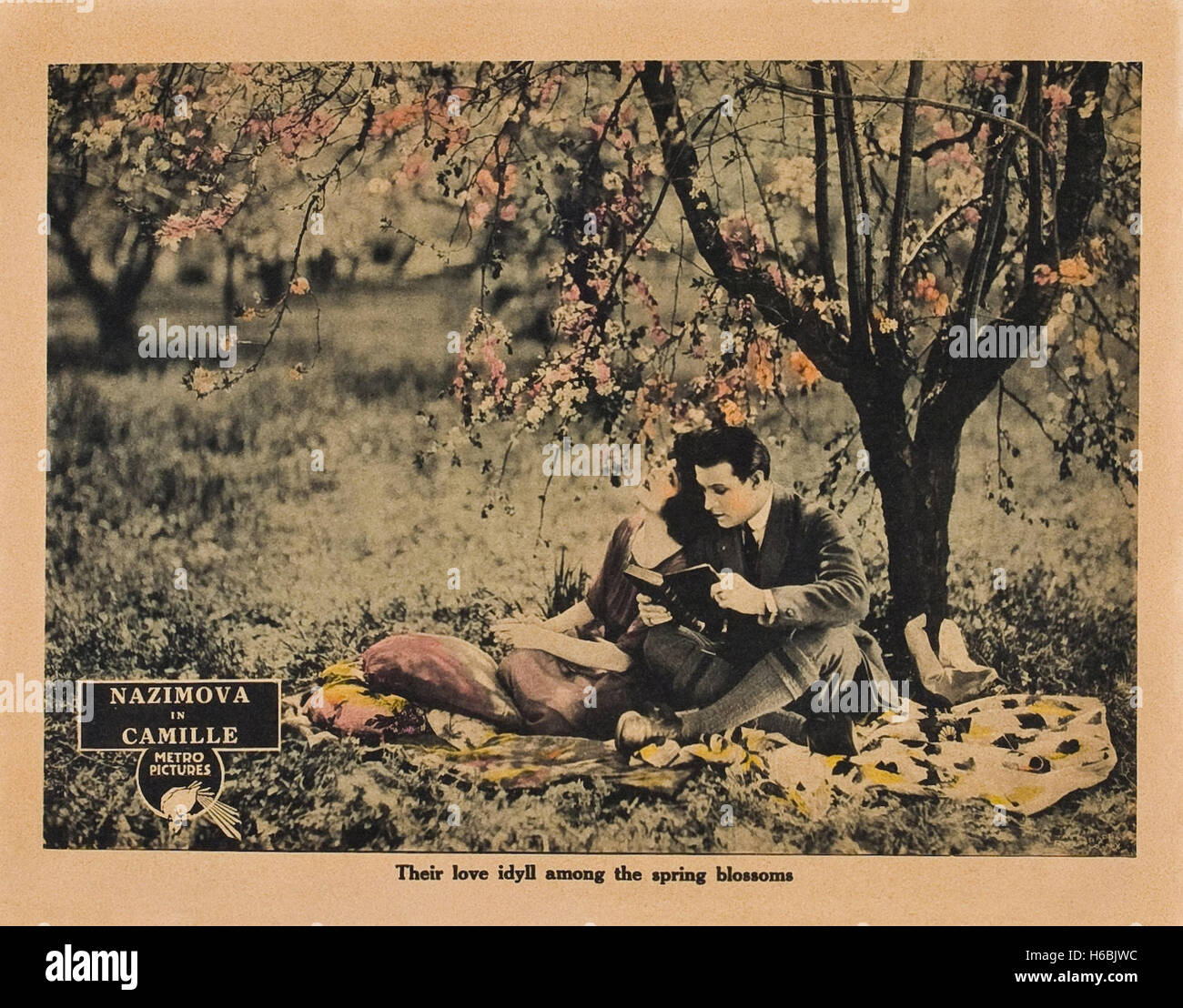 Camille (1921)  - Movie Poster - - Stock Image