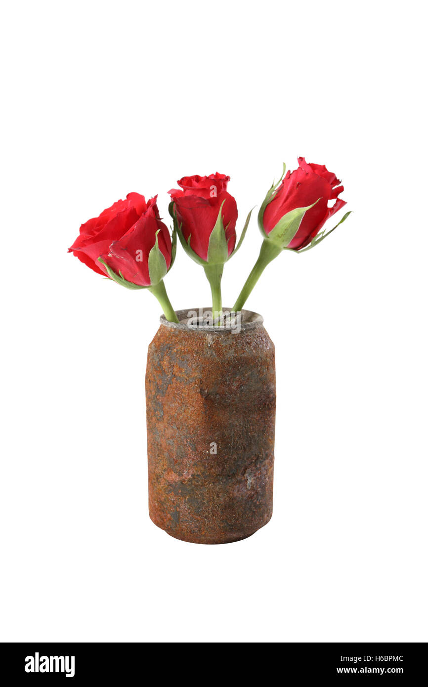 Cheap flowers stock photos cheap flowers stock images alamy red flowers in glass stock image izmirmasajfo