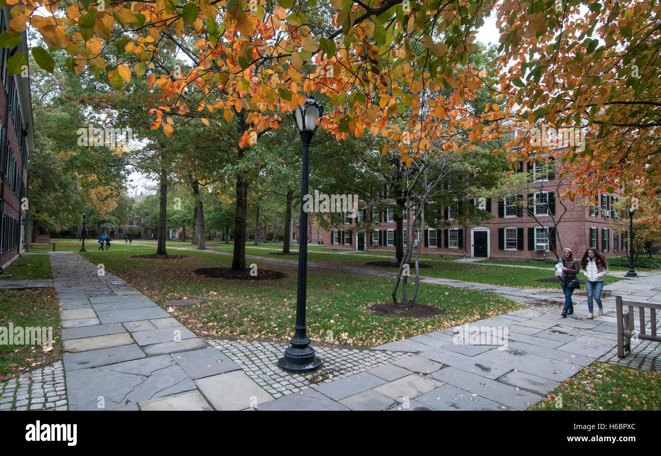 Two female students walk though the quad on Yale University's Old Campus on an autumn afternoon. - Stock Image