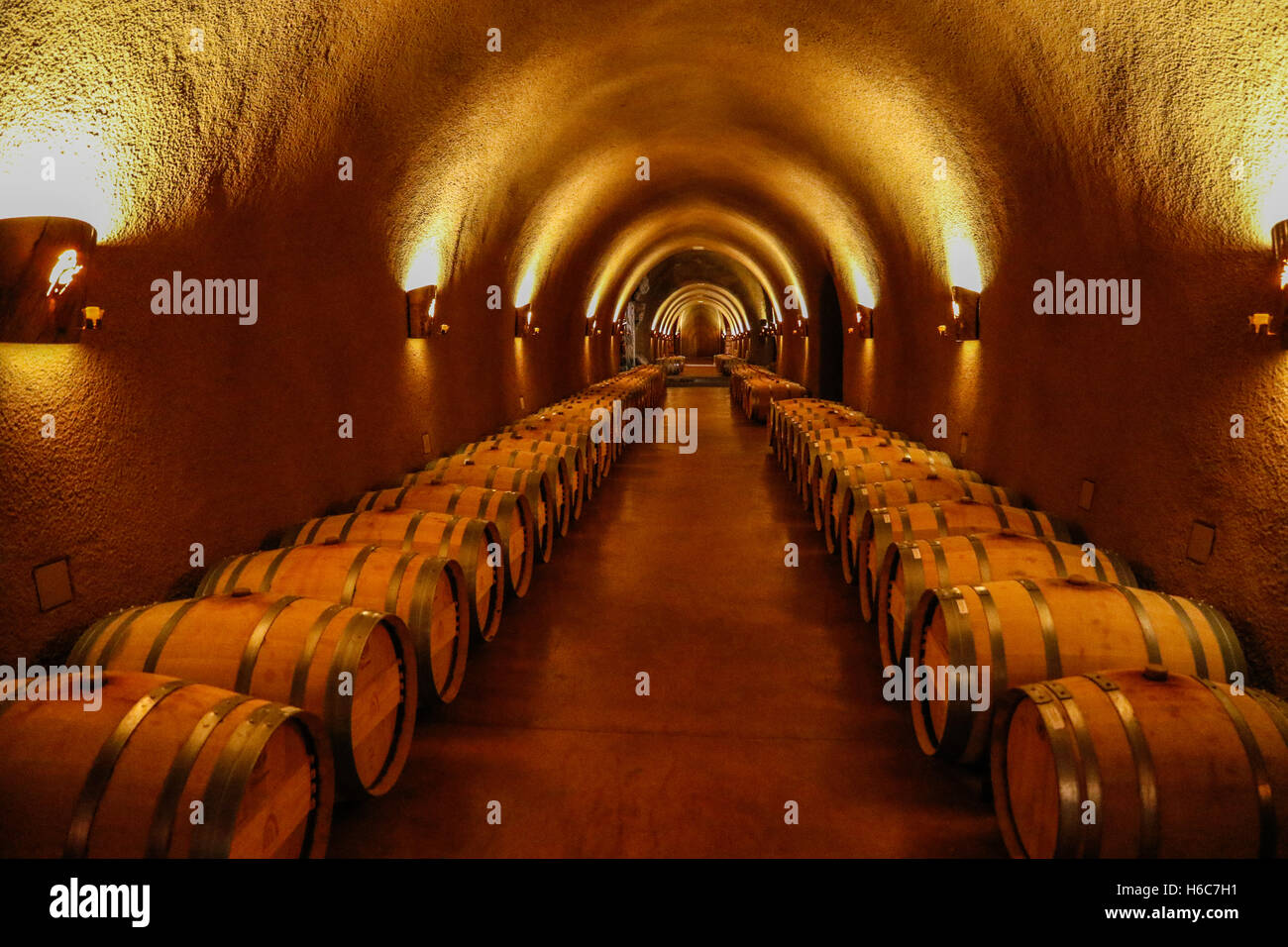 Empty wine barrels in a winery - Stock Image