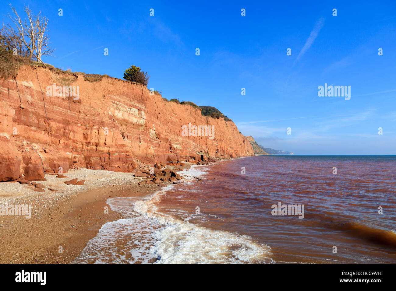 The beach and Otter sandstone Triassic cliffs stretching eastwards from Sidmouth, Devon, UK basking in late October - Stock Image