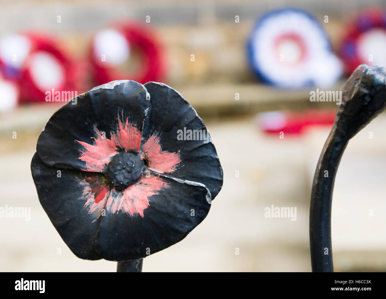 Close up of black wrought iron decorative railing in the shape of a poppy around a memorial, with poppy wreaths - Stock Image