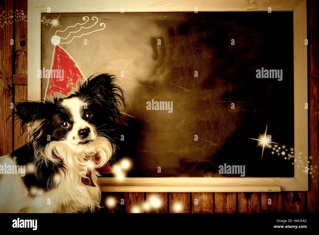 funny dog christmas greeting cards little dog and santa hat childrens drawing in a blackboard with copy space to write message - Funny Dog Christmas Cards