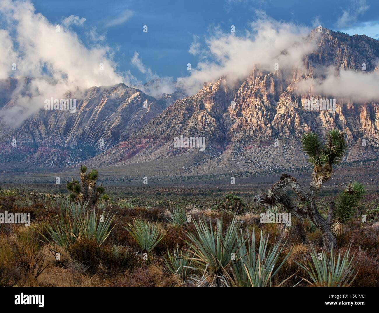 Large red rock formations and sandstone peaks and walls of Keystone Thrust at the Red Rock Canyon National Conservation - Stock Image