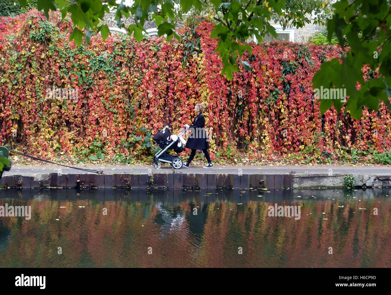 Young mother with baby buggy walks along Regents Canal in autumn, Islington, London - Stock Image