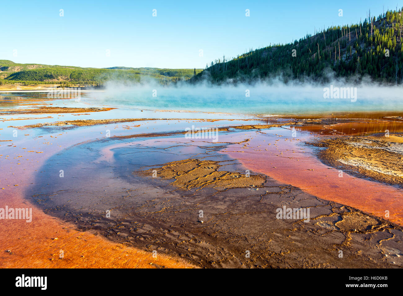 Steam rising from Grand Prismatic Spring in Yellowstone National Park - Stock Image