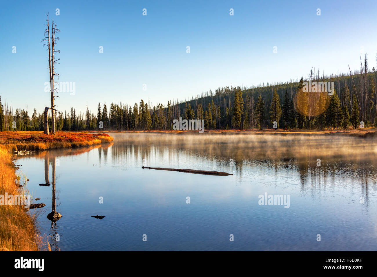 Early morning landscape view of the Snake River in Yellowstone National Park - Stock Image