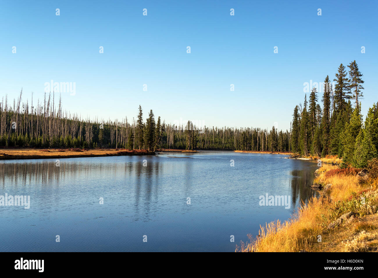 Landscape view of the Snake River in Yellowstone National Park - Stock Image
