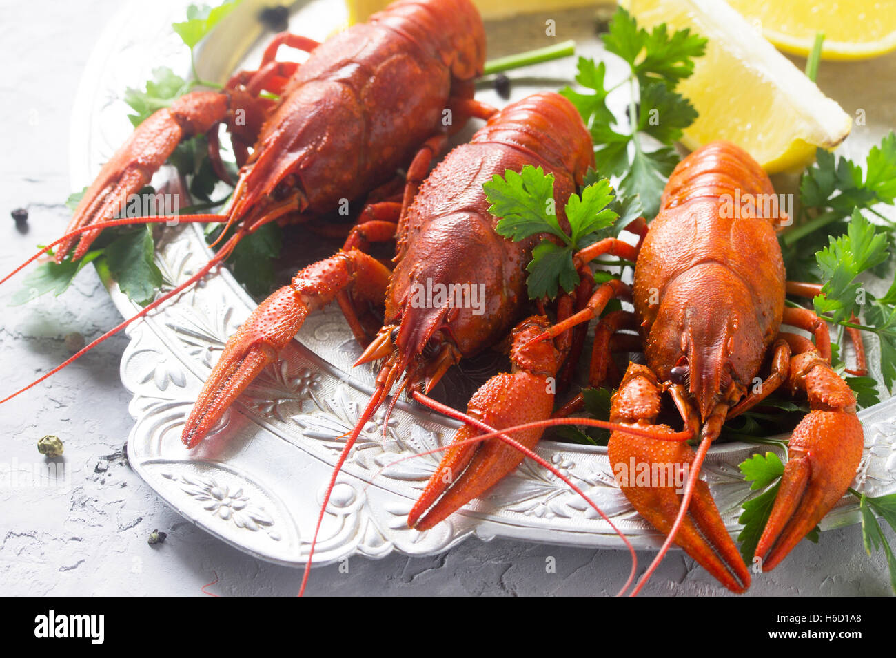 Boiled crayfish, lemon and parsley on a concrete background, selective focus. Food background. The concept of healthy - Stock Image