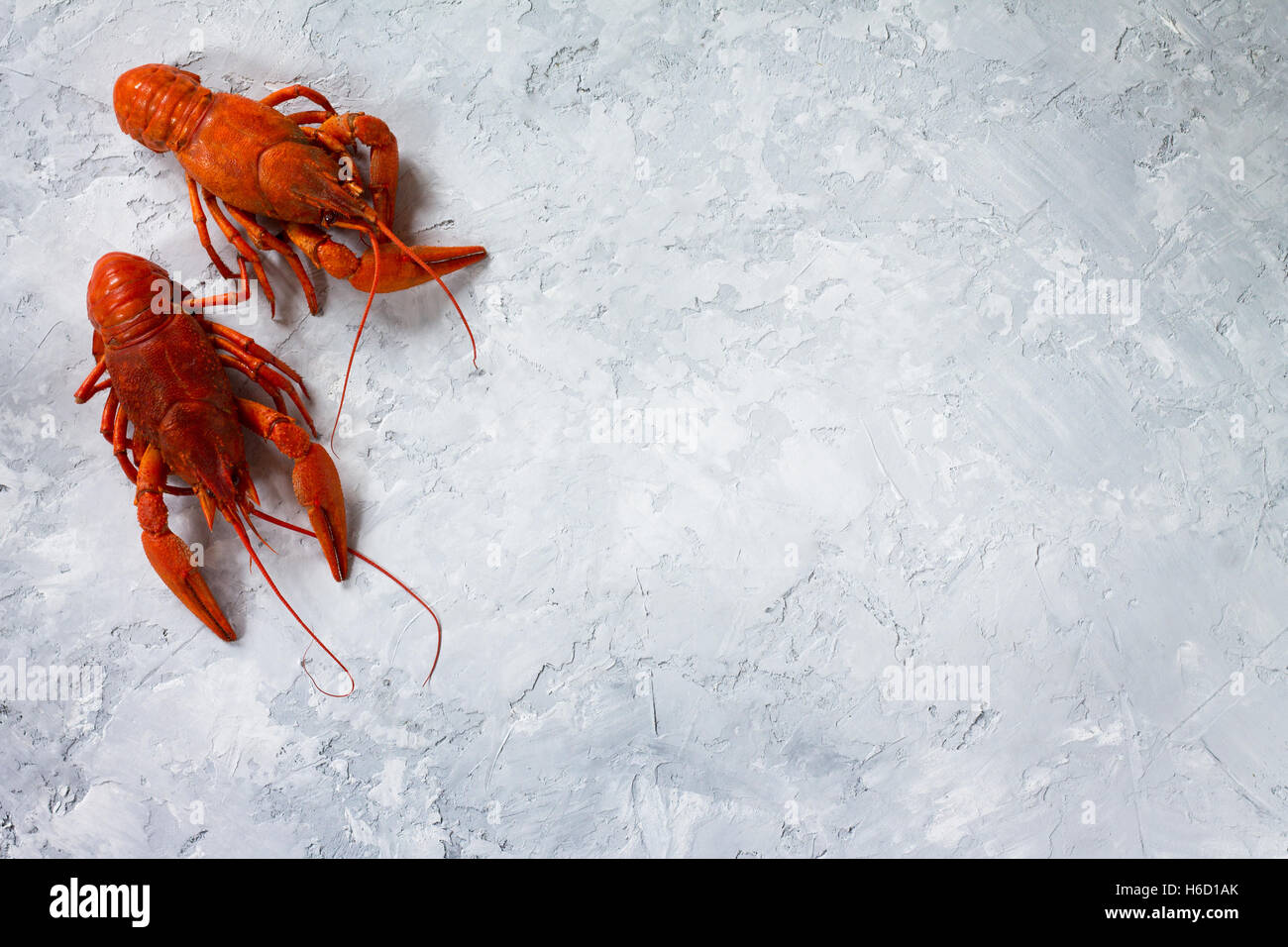 Boiled crayfish, selective focus. Food background. The concept of healthy eating. - Stock Image