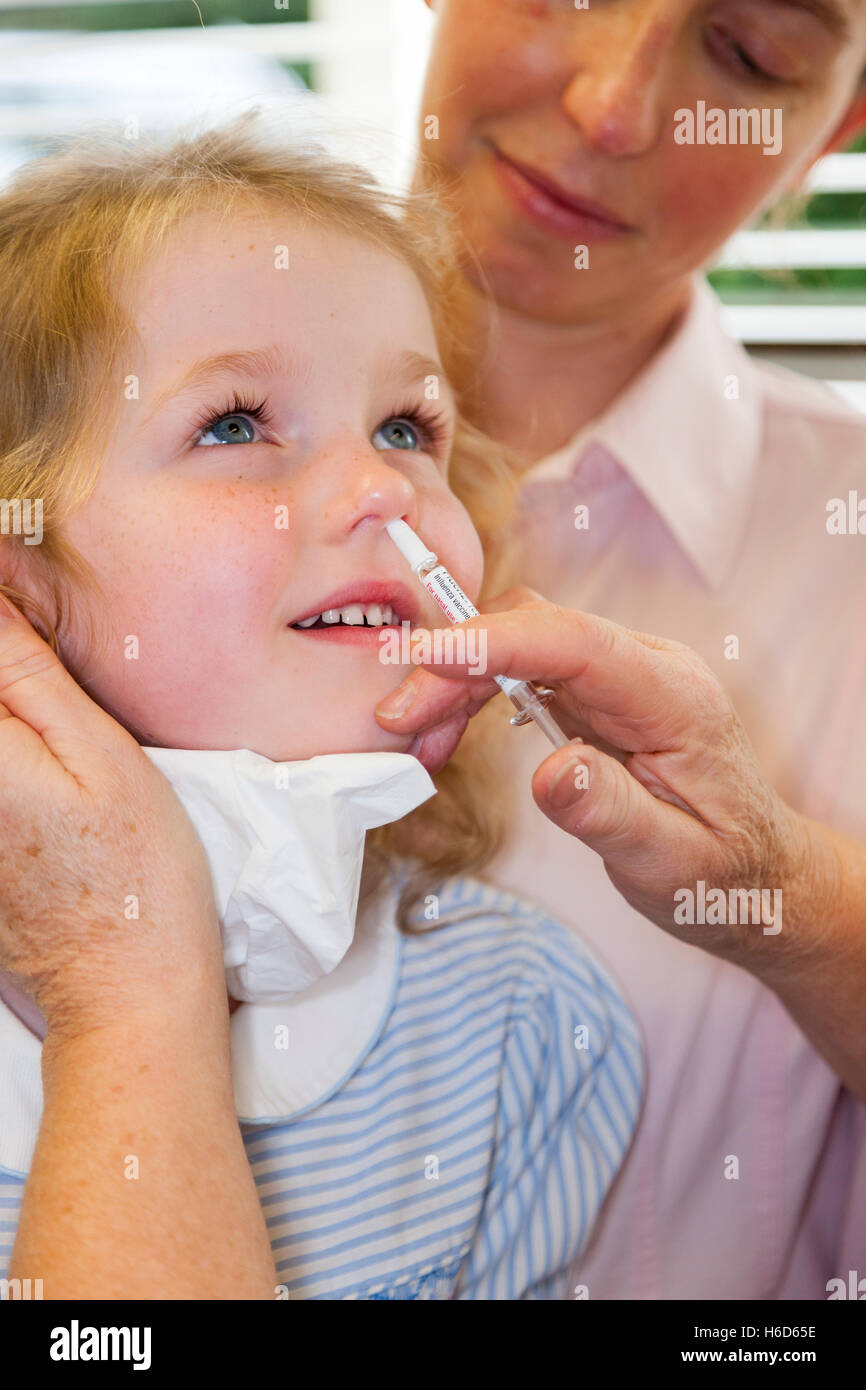4 year old child, with her mum / mother, receives dose of Fluenz flu vaccine nasal spray immunisation from NHS Practice - Stock Image