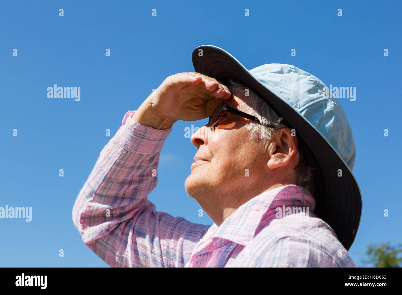 A senior woman wearing a wide brimmed sunhat and dark glasses in sunshine shades her eyes to look far up at the - Stock Image