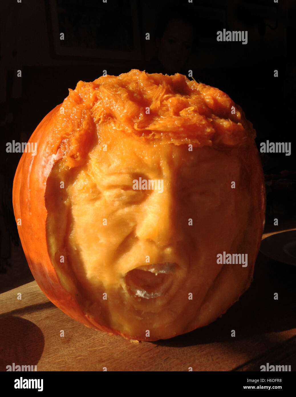 Cambridge, UK. 22nd October, 2016. TRUMPKIN. Image released 27th of October, 2016. Donald Trump screaming carved - Stock Image