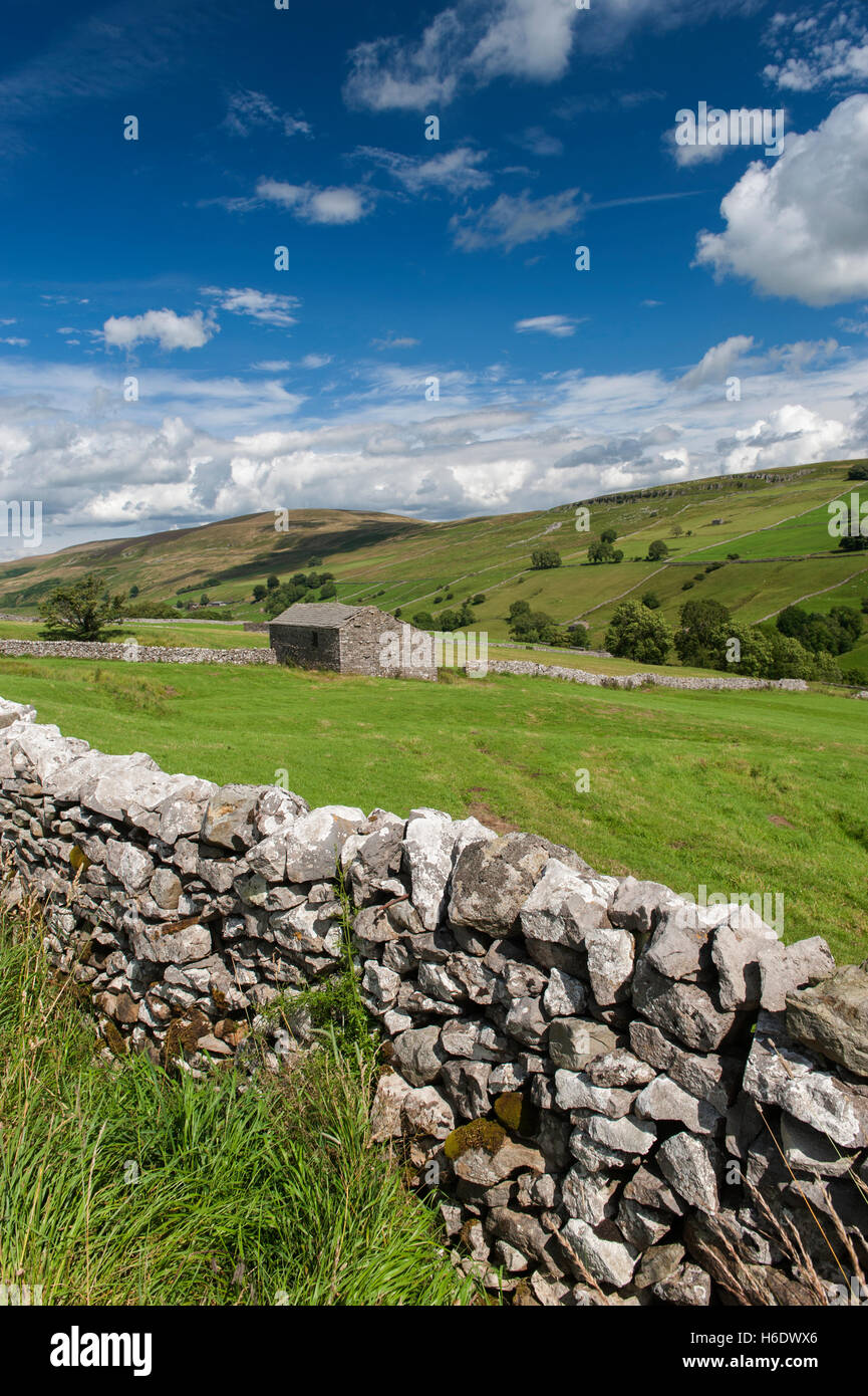 Looking down Walden in the summer, Wensleydale in the Yorkshire Dales, UK. Stock Photo