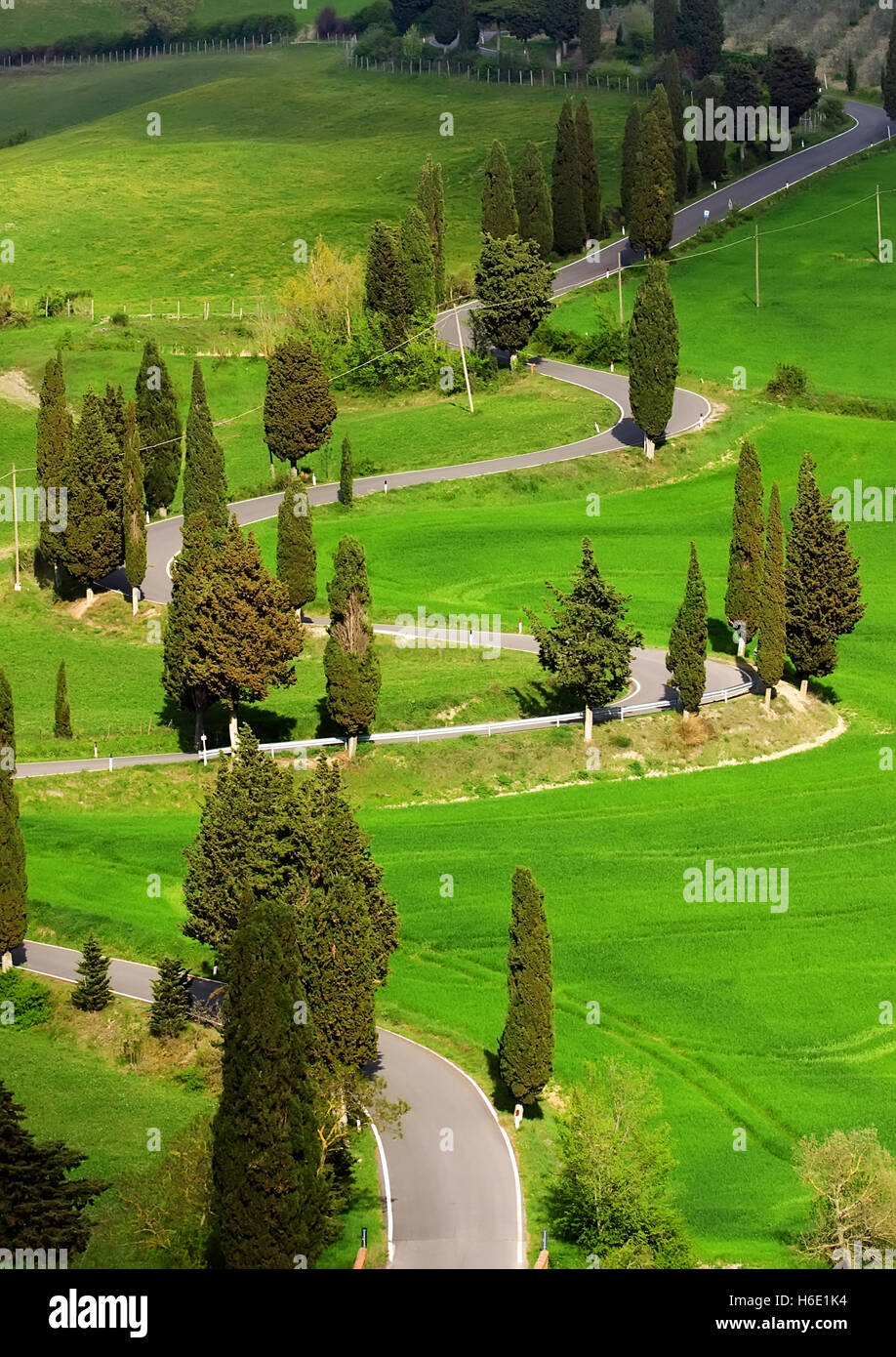 landscape of tuscany countryside during the spring time - Stock Image