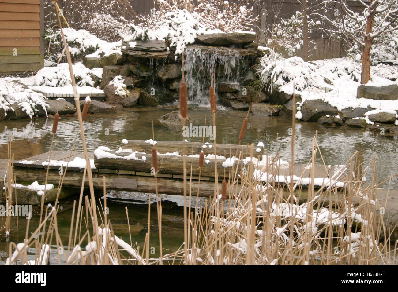 Winter at the Botanical Garden in Cleveland, Ohio Stock Photo ...