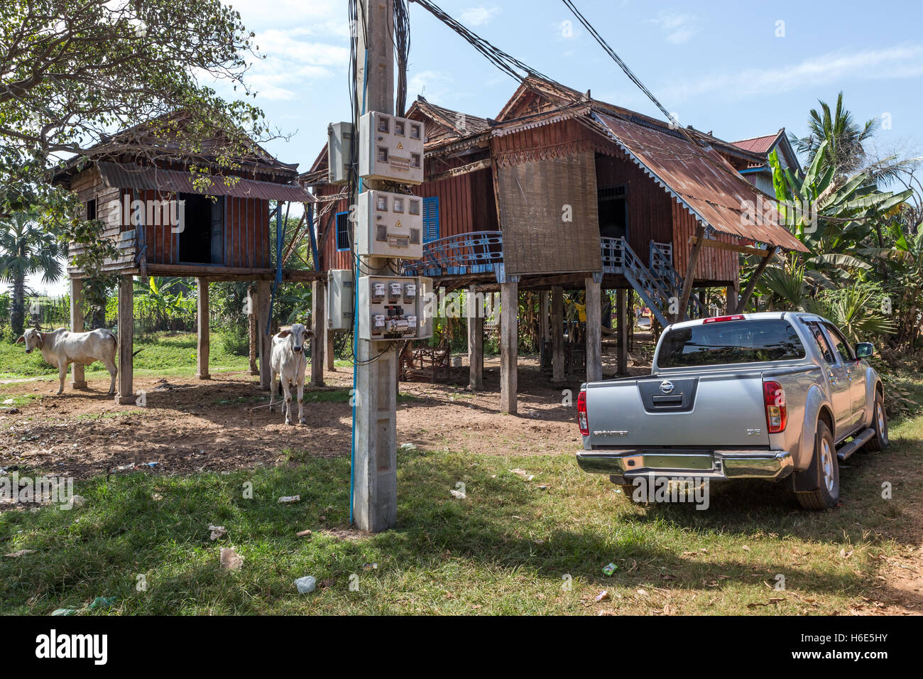 Traditional stilted wooden homes + ox + car, Village, Cambodia Stock Photo