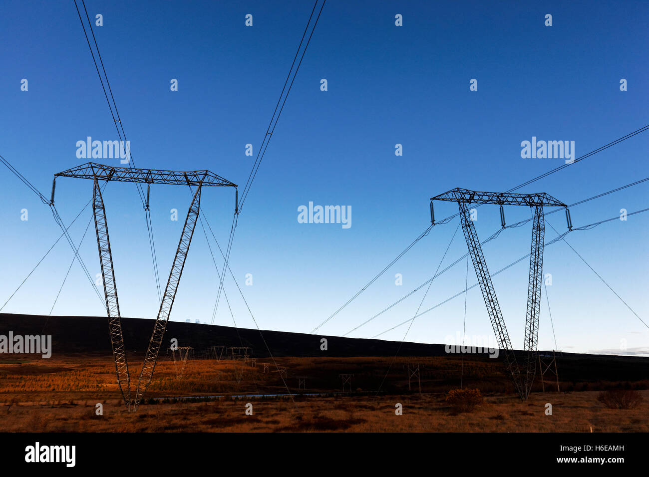 High tension power lines in Landscape, East Iceland, North Atlantic, Europe - Stock Image