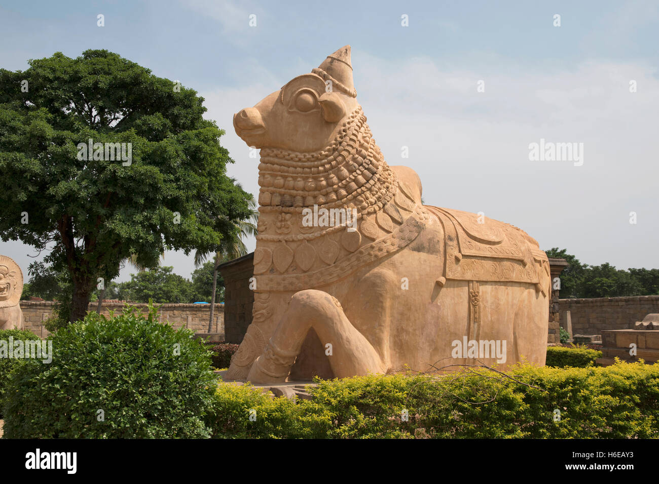 Huge Nandi bull at the entrance, Brihadisvara Temple Stock Photo - Alamy