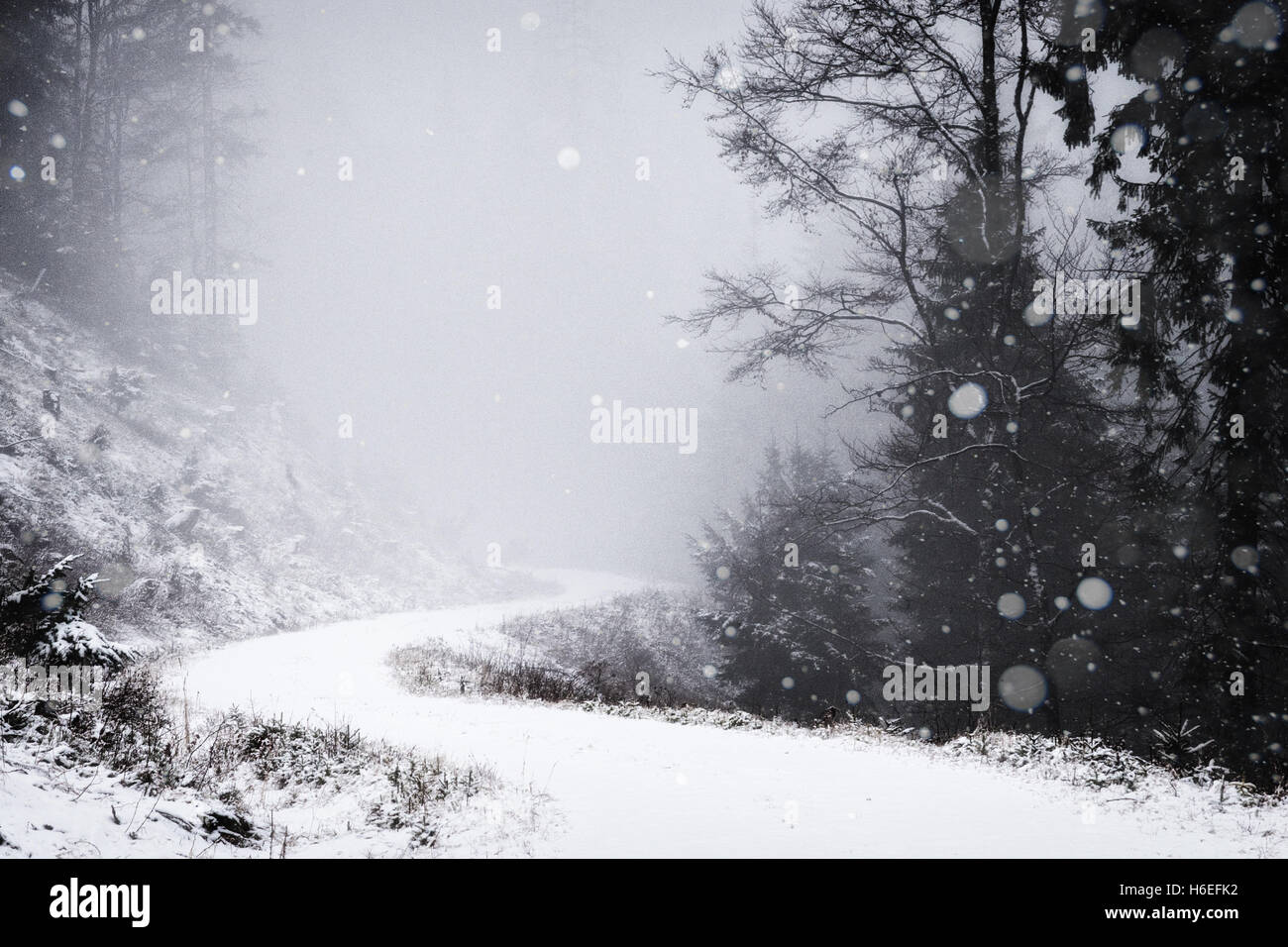 Snow falls on a small mountain road through the forest. - Stock Image