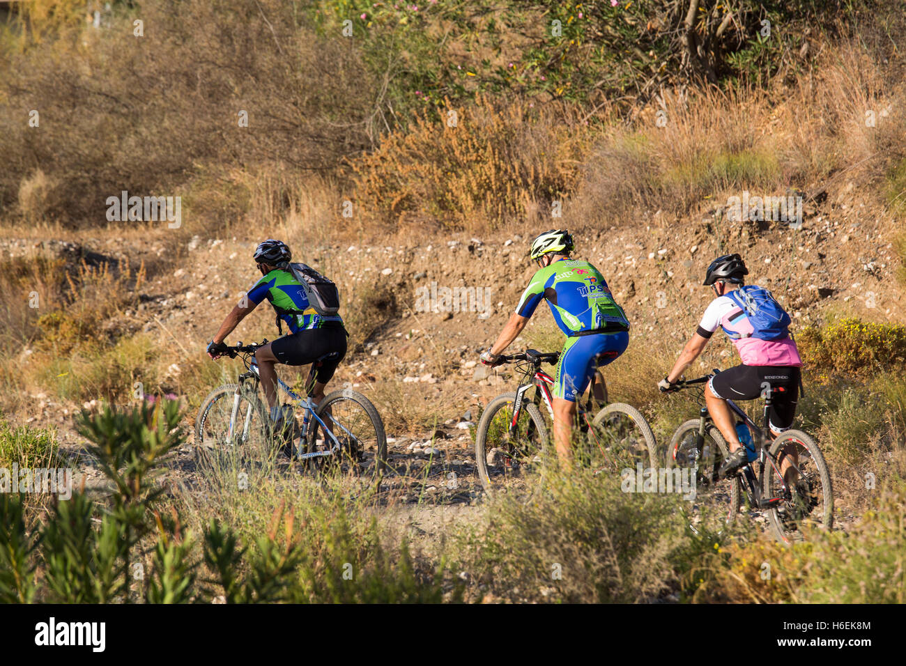 Mountain bikers on trails. Mijas. Costa del Sol, Malaga province. Andalusia Spain. Europe - Stock Image
