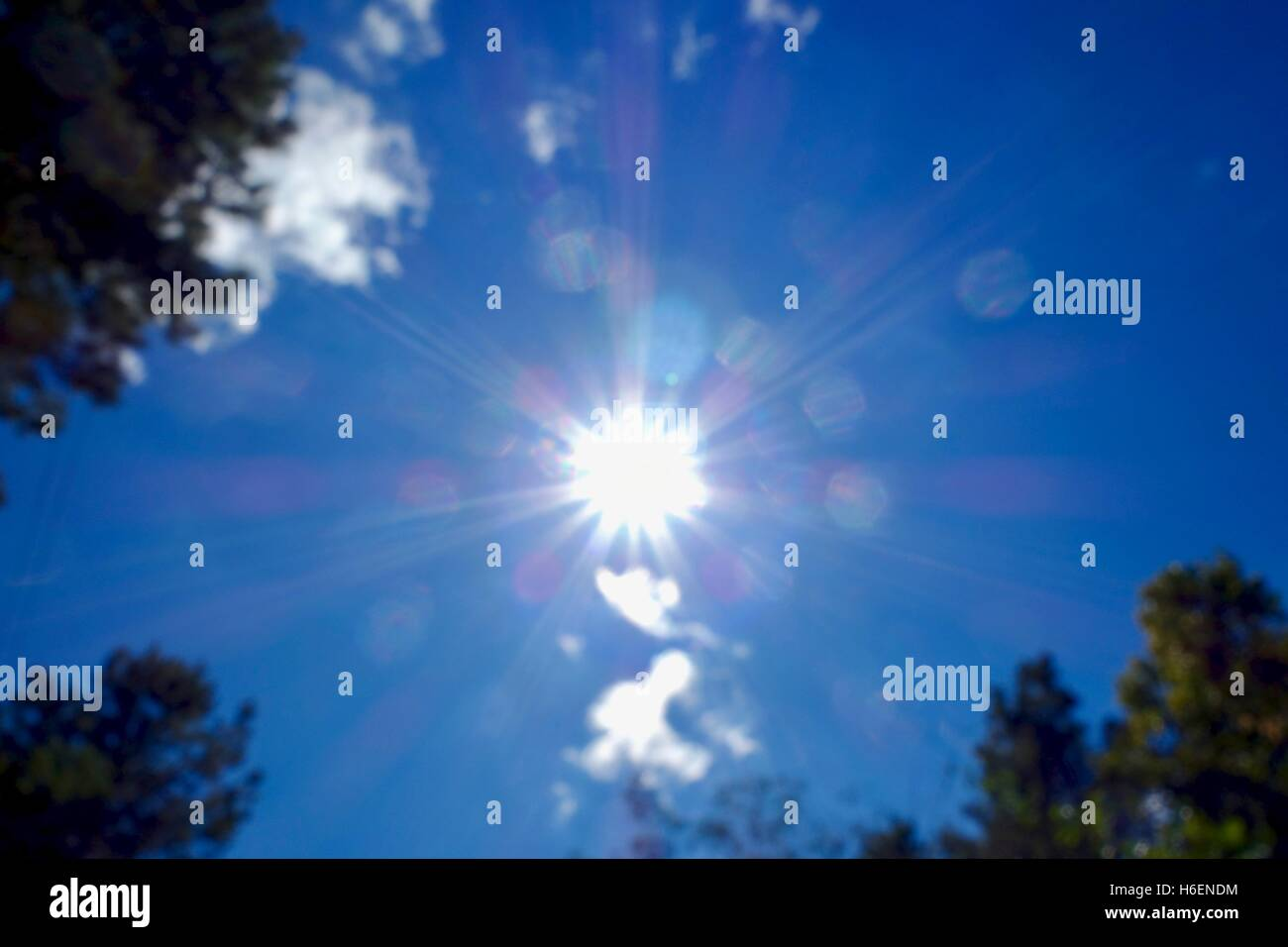 Looking up into the bright summer sky on a partly cloudy day. - Stock Image