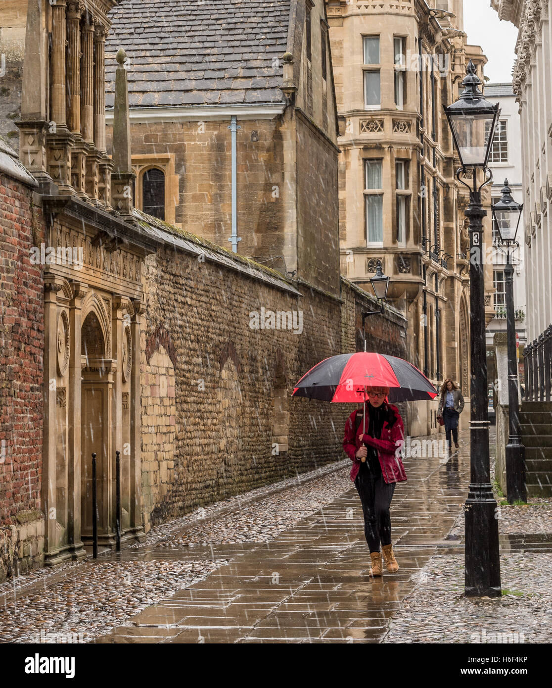 Young Woman walking in heavy rain with umbrella in Cambridge, near historic college buildings - Stock Image