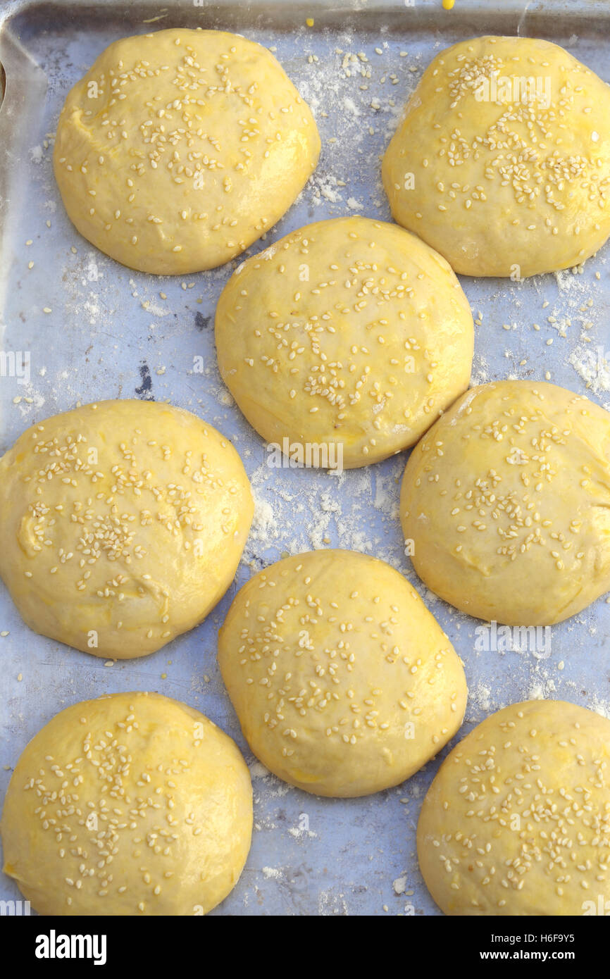 Burger-bun dough or batter ready for the oven, sprinkled with sesame seeds and brushed with egg wash. - Stock Image