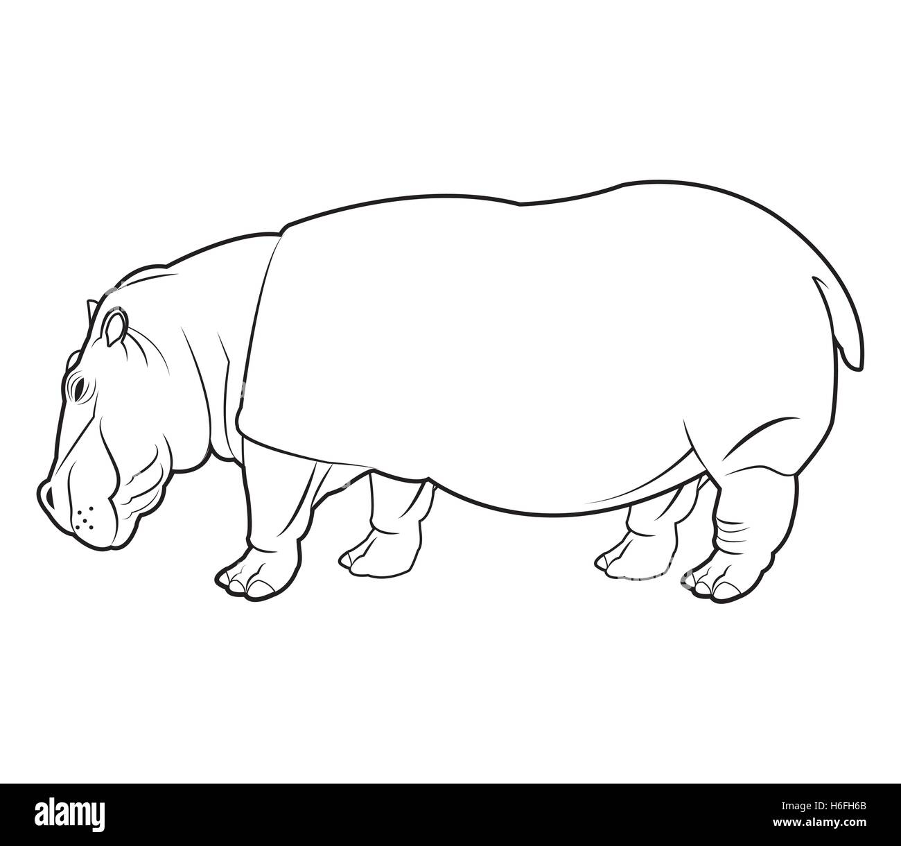 Black And White Hippo Stock Photos & Black And White Hippo Stock ...