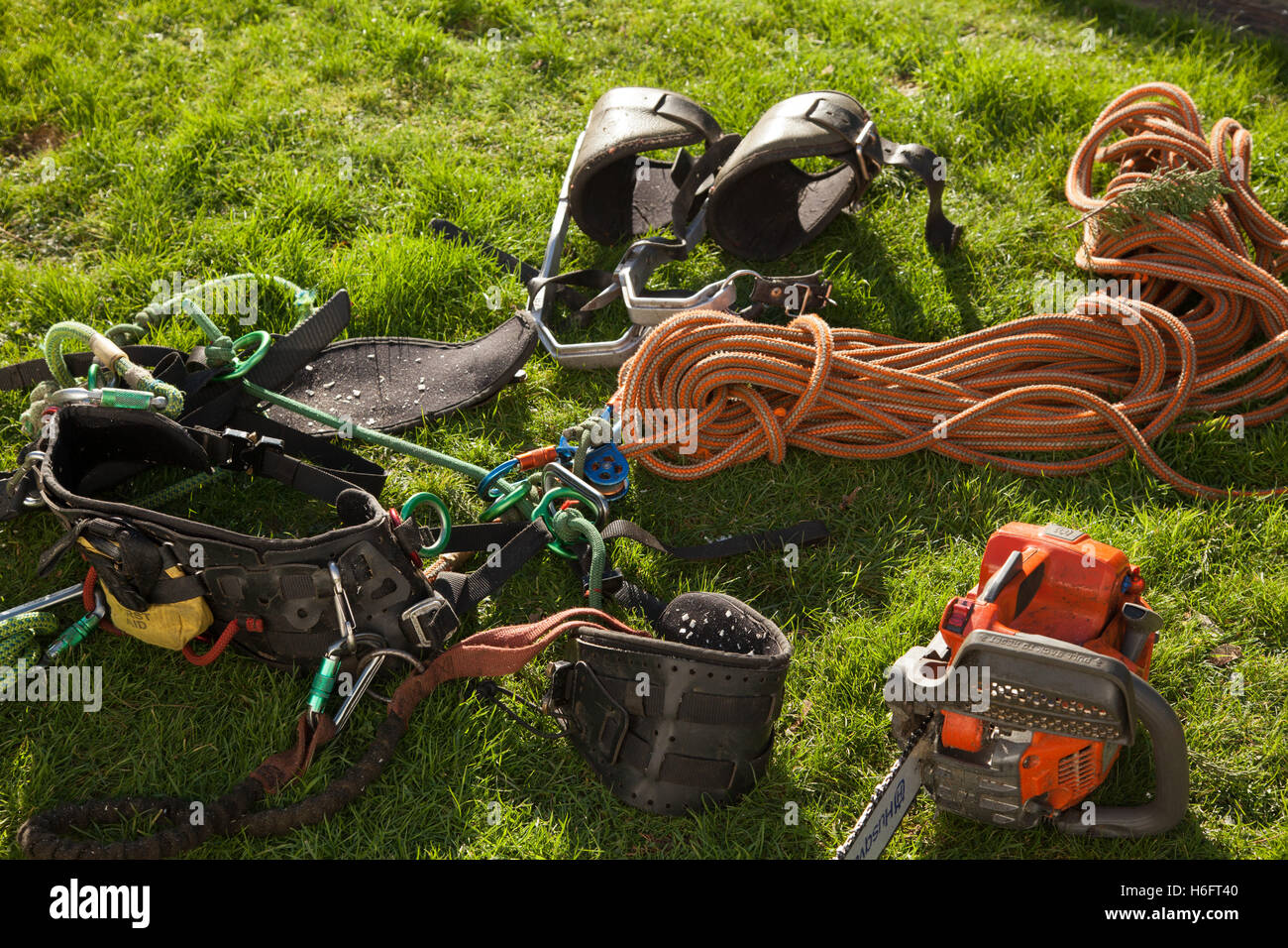 Tree surgeons equipment, climbing harness, rope, chainsaw, protection, tackle - Stock Image