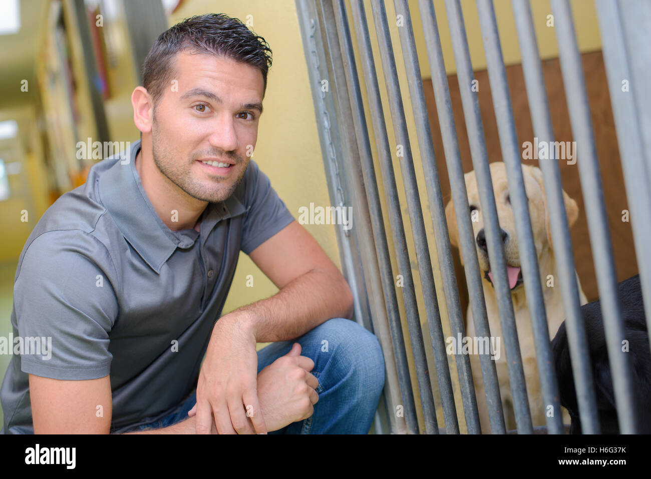 Man next to dog kennel - Stock Image