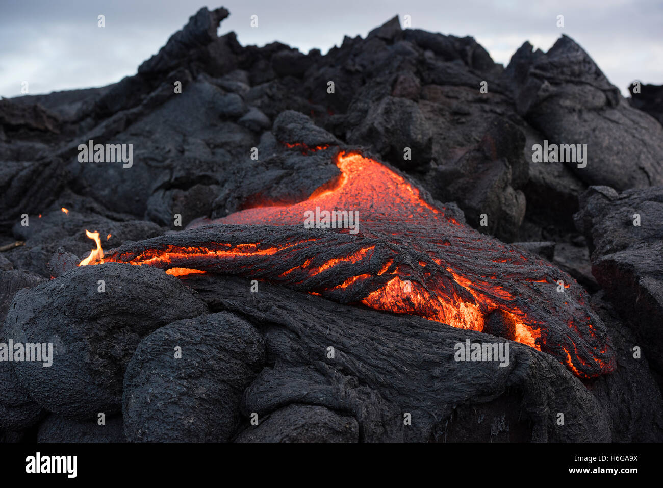 pahoehoe lava from the 61G flow, Kilauea Volcano, oozes from a breakout in Hawaii Volcanoes National Park, Hawaii, - Stock Image