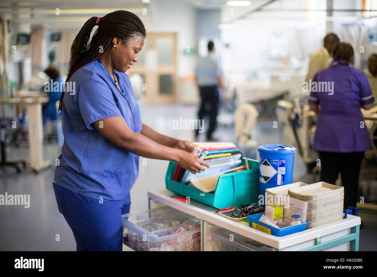 A hospital nurse checking patient notes on the ward trolley - Stock Image