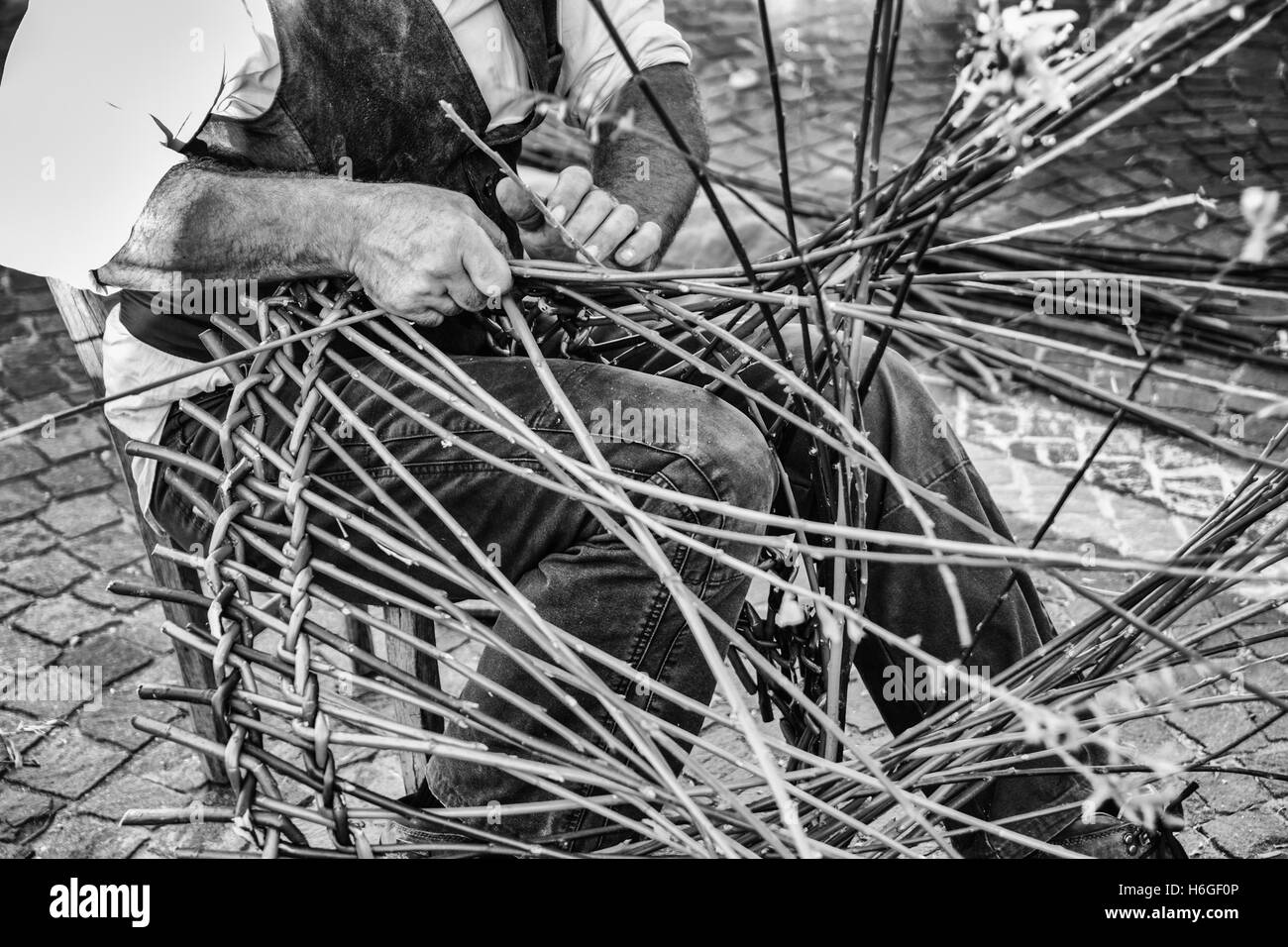 Artisan builds wicker baskets using the branches of Salix viminalis. - Stock Image