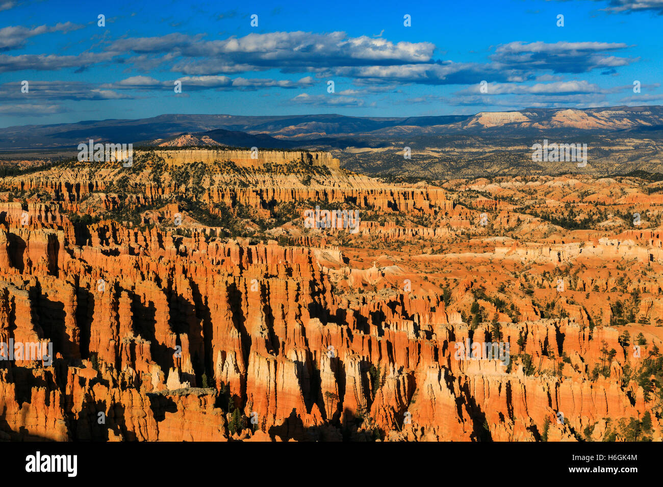 This is a late-afternoon view of the Bryce Amphitheater as seen from Inspiration Point in Bryce Canyon National - Stock Image