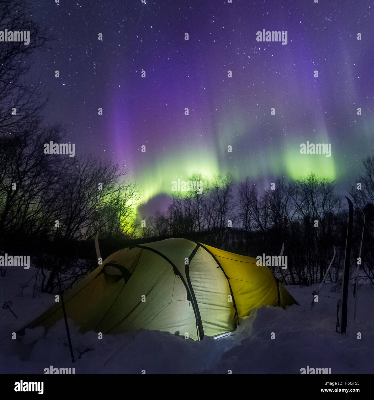 Tenting under the auroras in Finland - Stock Image